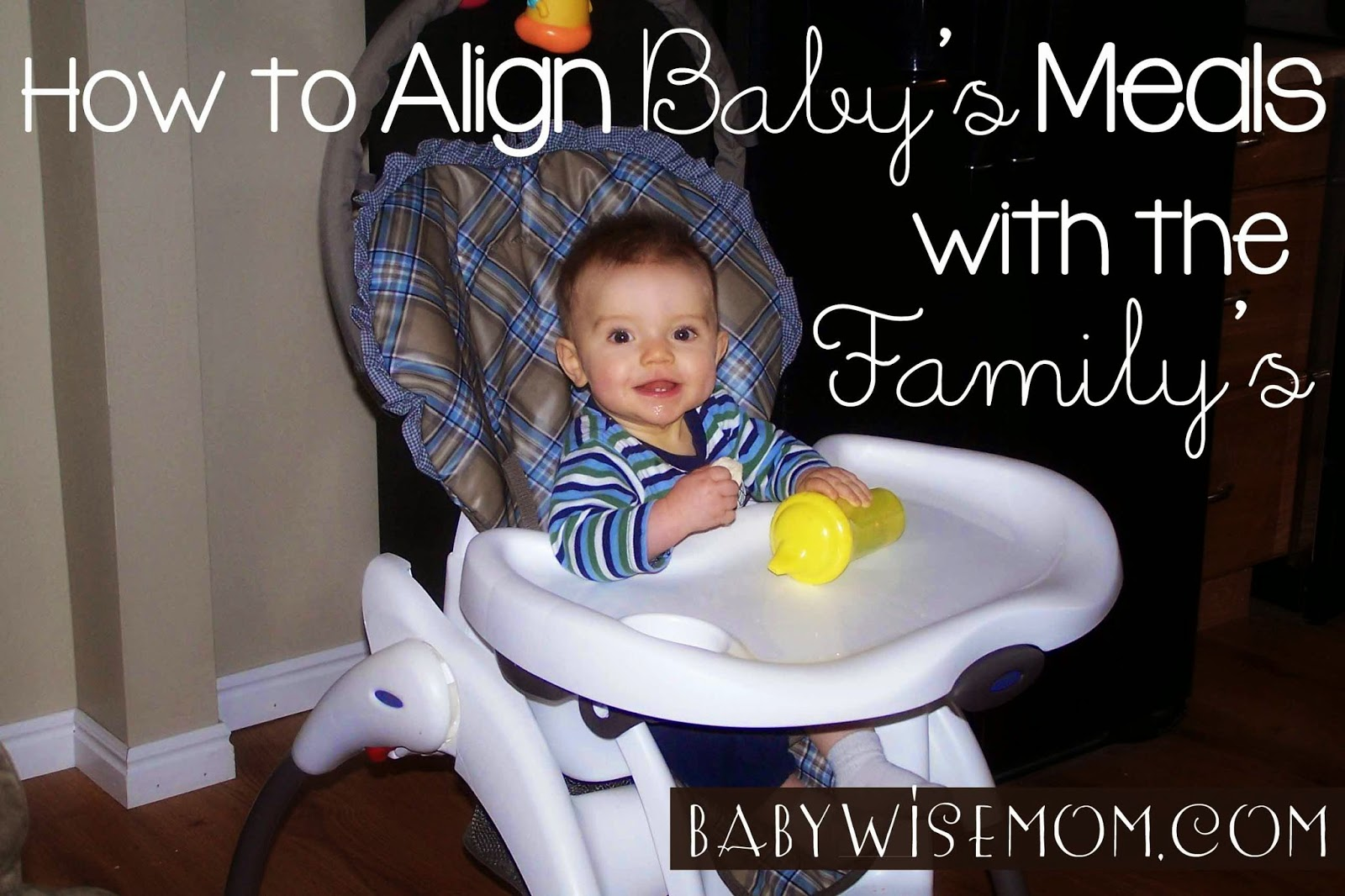 How to Align Baby's Meal Times with Family's Meal Times