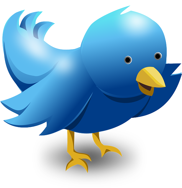 What to do when twitter locks your account