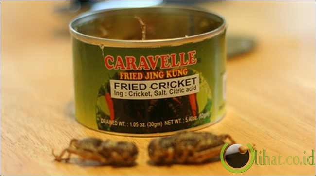 Canned Roasted Crickets with eggs