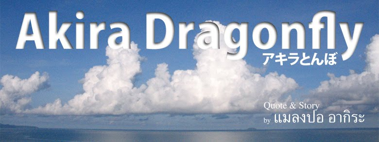 Akira Dragonfly (แมลงปอ อากิระ)