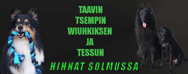 Tessun, Taavin, Tsempin ja Wiuhkiksen blogi