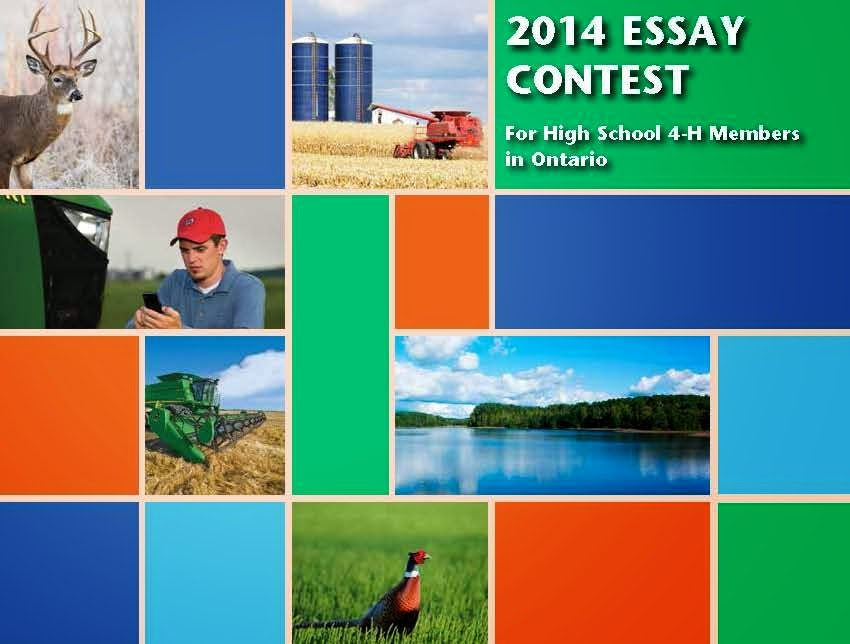 high school student scholarship essay contest