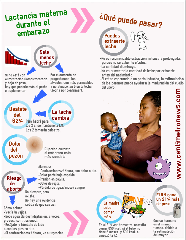 Lactancia durante el embarazo infografia