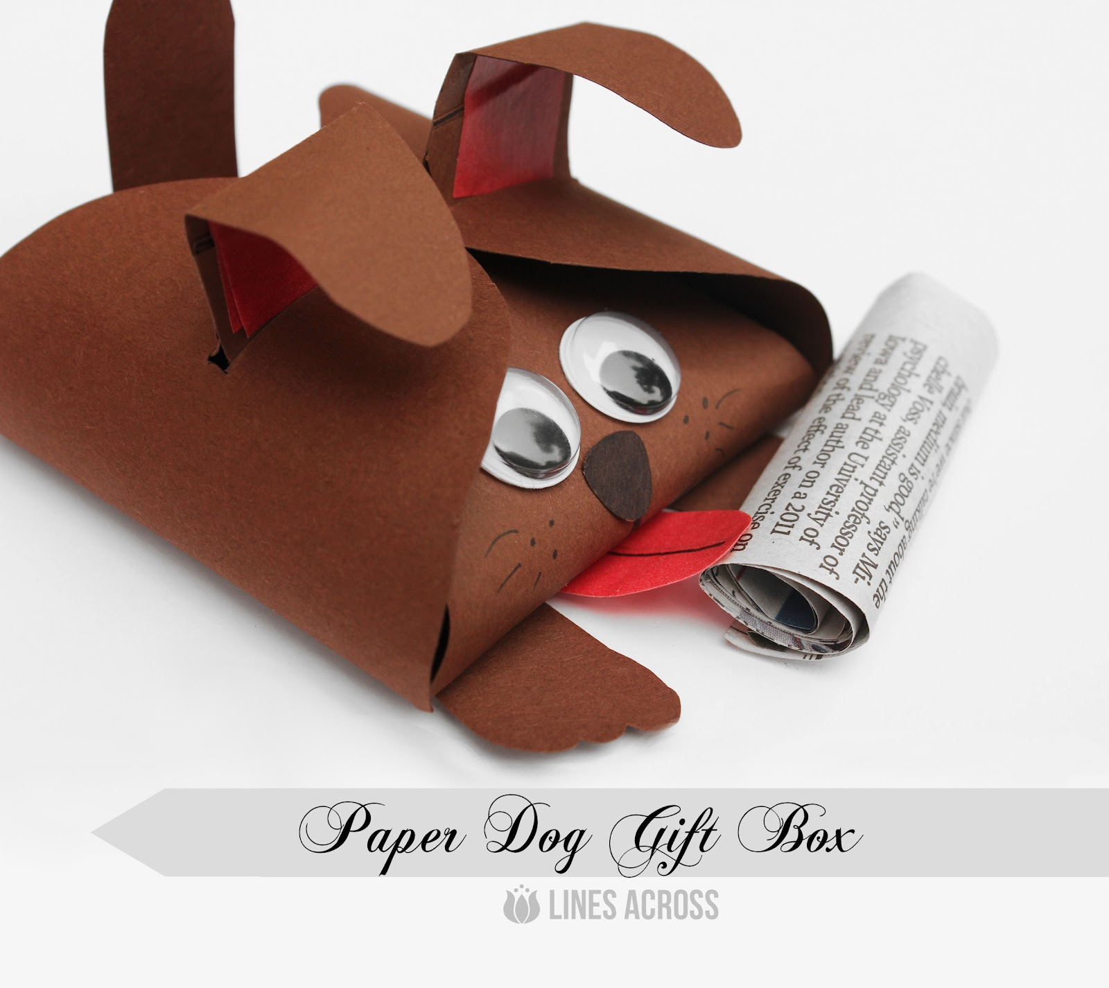 Dog and Cat Paper Gift Boxes   Lines Across