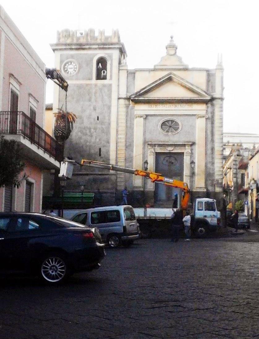 Piazza Dante - Abbattuta la palma