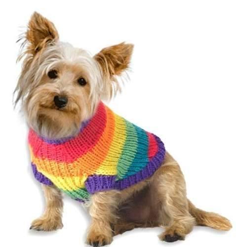 chalecos tejidos a crochet para perros imagui
