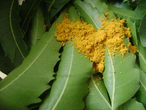 Neem-tea-ingredients+neem-skin-care.png