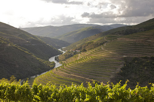 the best places to travel Porto and Douro valley