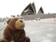 Teddy Bear in Sydney,Australia