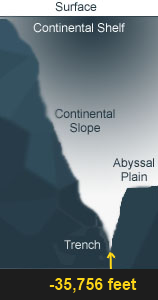Cross section of the Mariana Trench