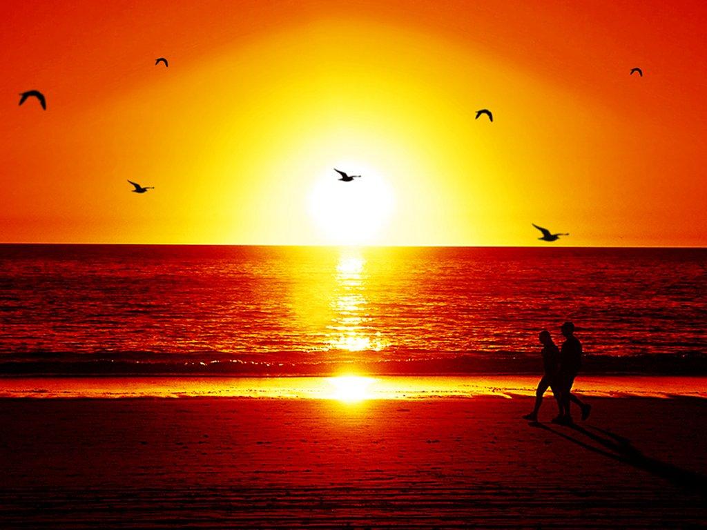 Free Wallpaper Beautiful Sunset In Beach Wallpaper HQ