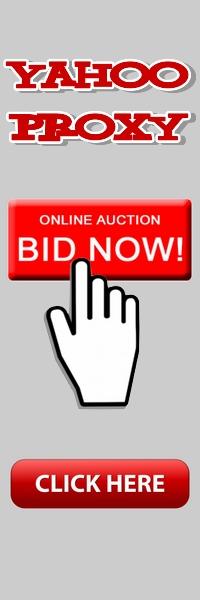 Bij Auctions