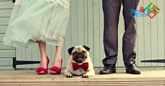Casamento com cão