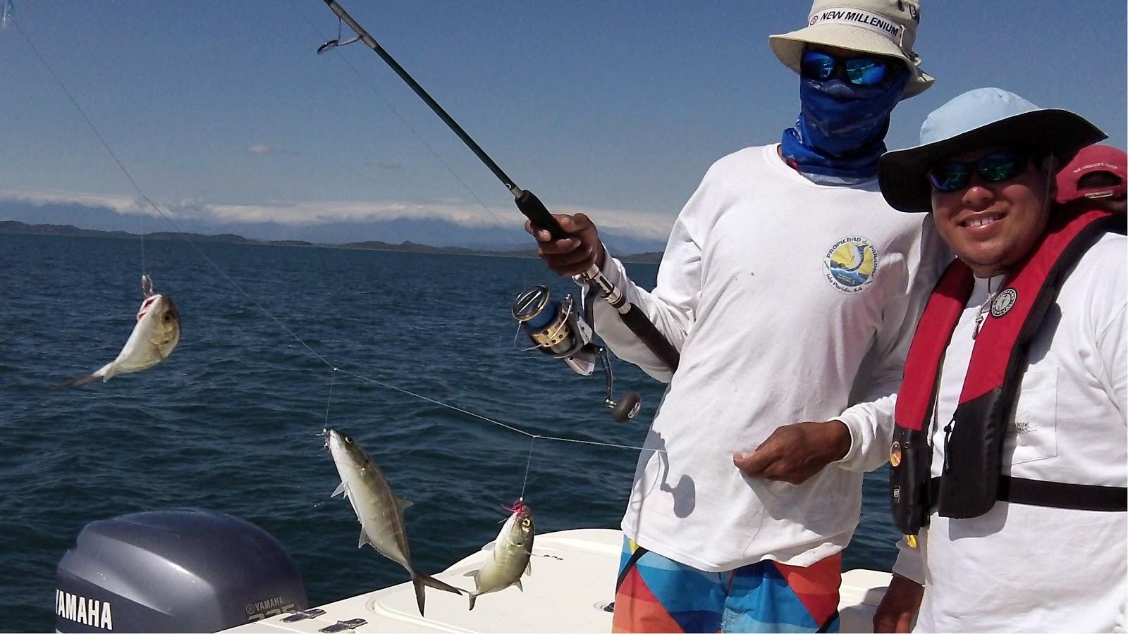 Sport fish panama island lodge formerly propiedad de for Panama sport fishing