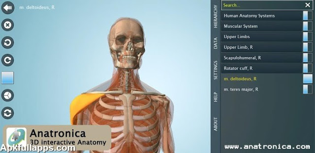 Anatomy 3D Pro - Anatronica v2.0.4