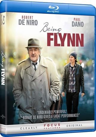 Viviendo como un Flynn 720p HD Español Latino Dual BRRip Descargar 2012