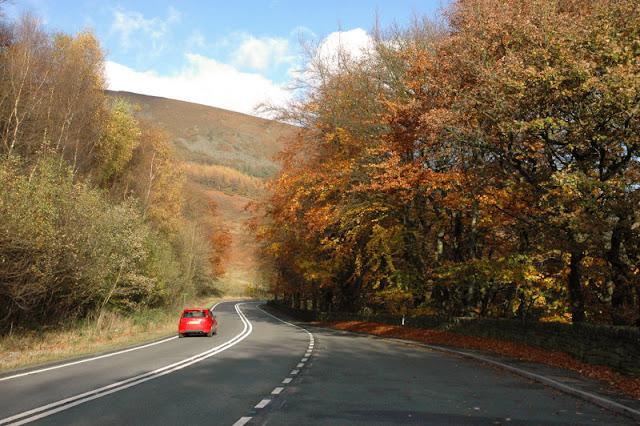 Autumn York3