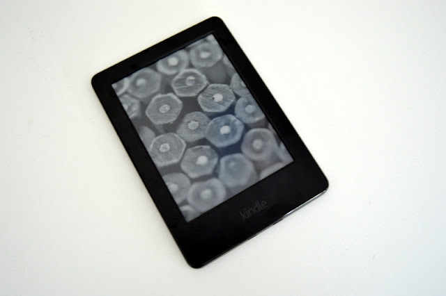 Kindle birthday present