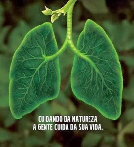 BioVida
