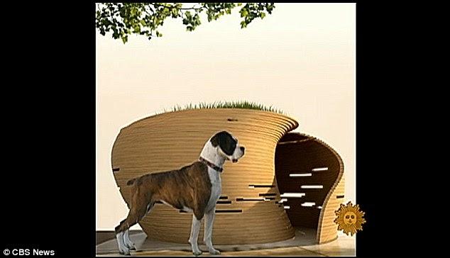 New York Dog House Specials
