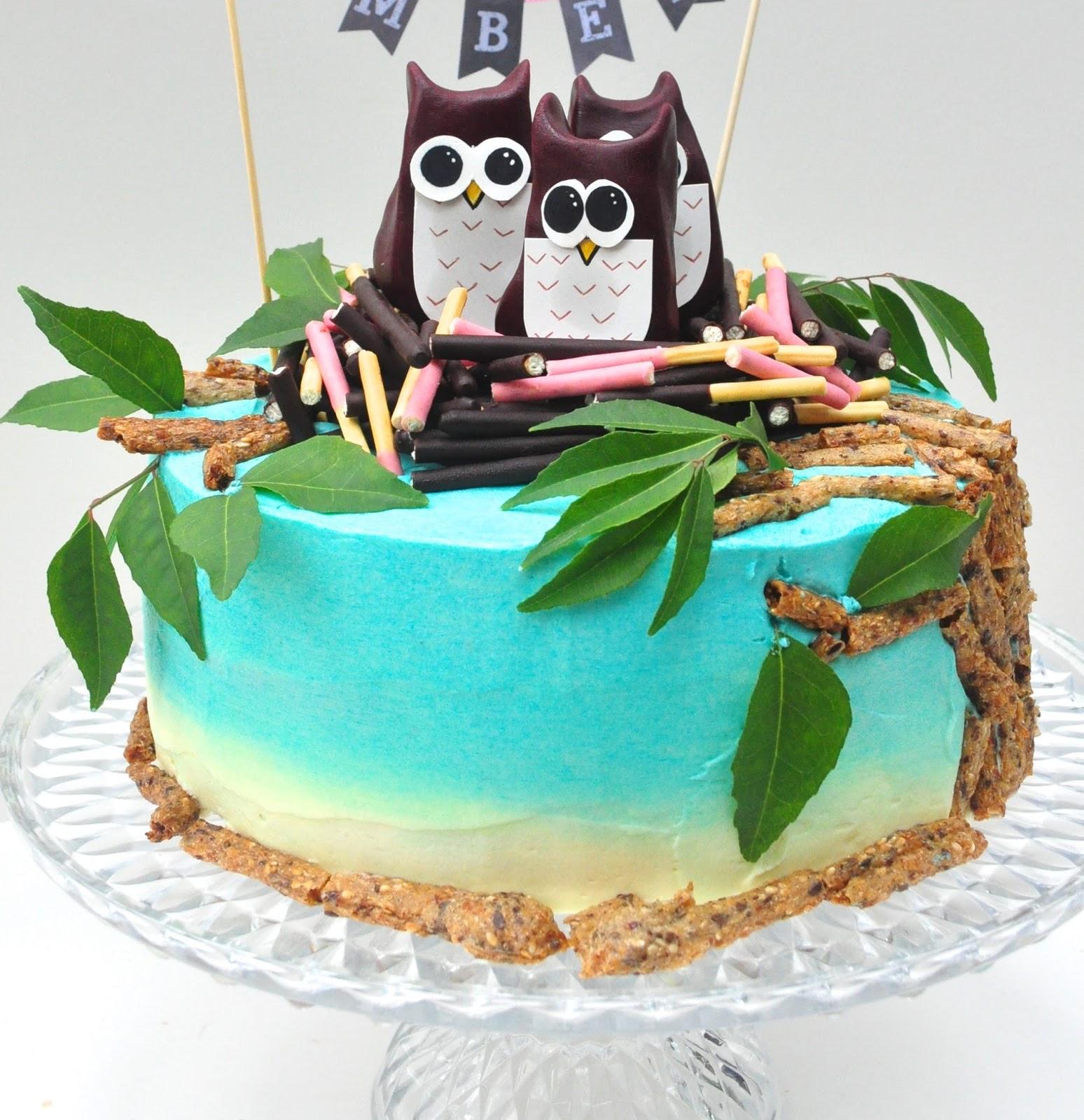A Spoonful Of Sugah Owl Babies Birthday Cake
