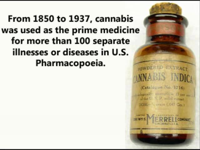 Social History of Marijuana