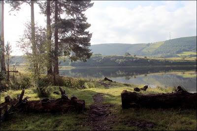Llyngwyn Lake - Fly Fishing Venue