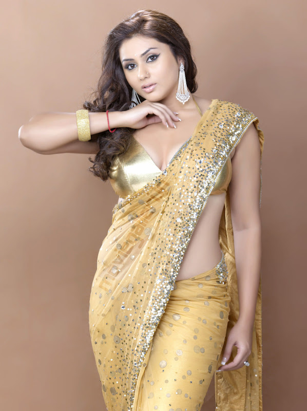 Actress Namitha Stills in Saree gallery pictures
