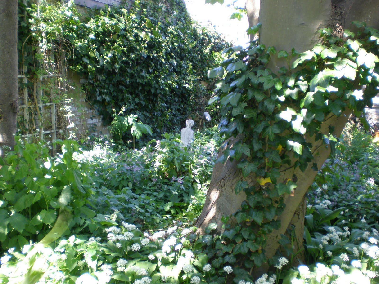 Vlasleeuwenbekje 39 s ooteetee lente in de tuin for Uitzending gemist eigen huis en tuin