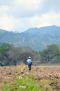 Photo credit: CIAT/Honduras