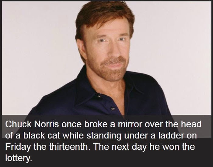 THESE CHUCK NORRIS FAC...