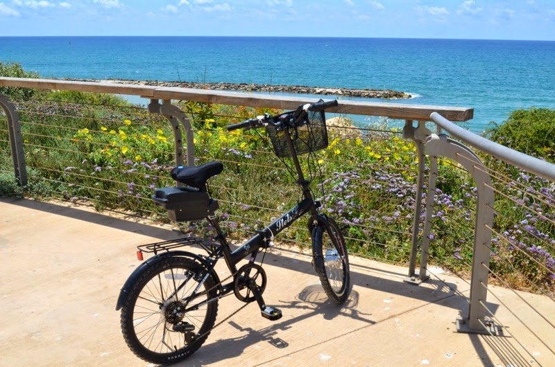Guest Post -  Why buy an electric bicycle? Go green and electrify your own bike!
