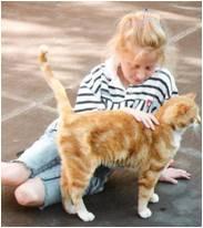 Relations entre les enfants et les animaux: Le lien à l