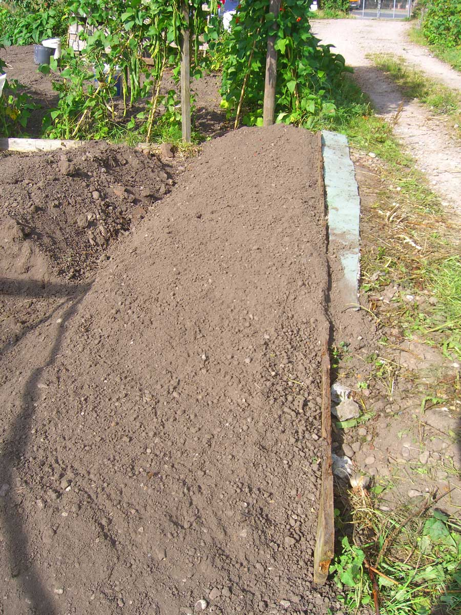 Allotment garden starting to clear and triple dig a new for All about soil