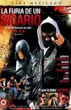 La furia de un Sicario (2013) [Latino]