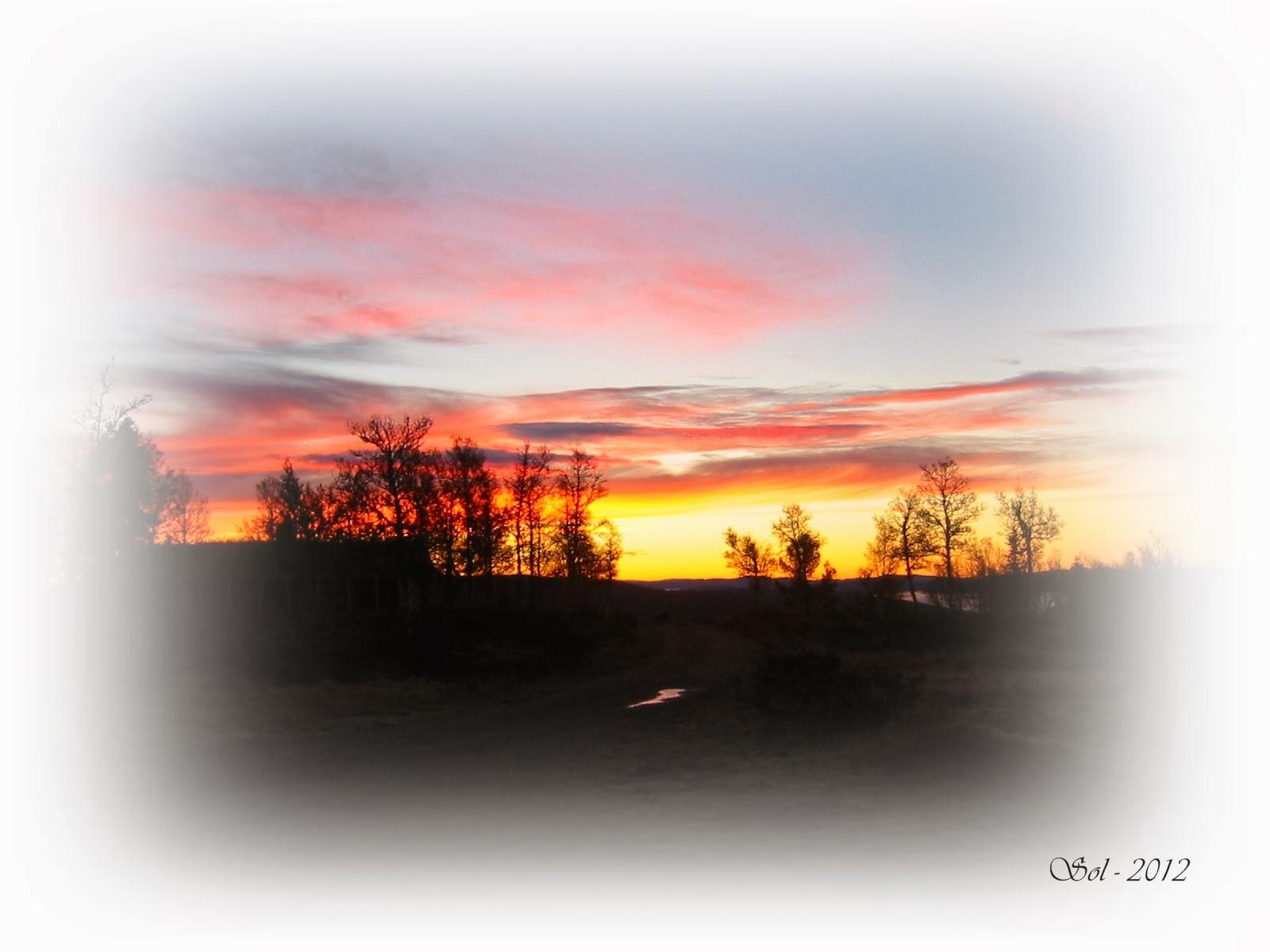 2012 Ut på tur