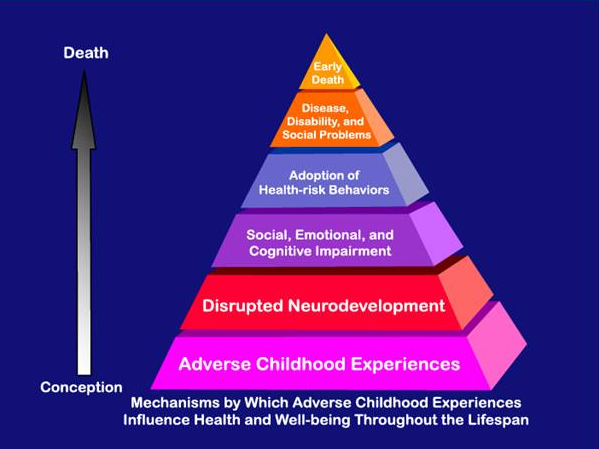 Serious Health Consequences to Children Witnessing Domestic Violence