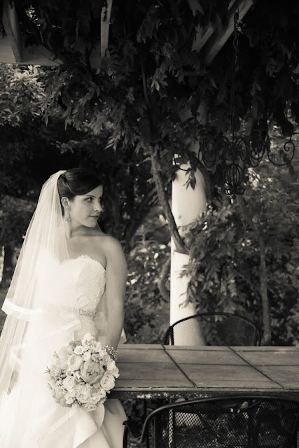 Veramar Vineyard Bridal Portrait Vintage
