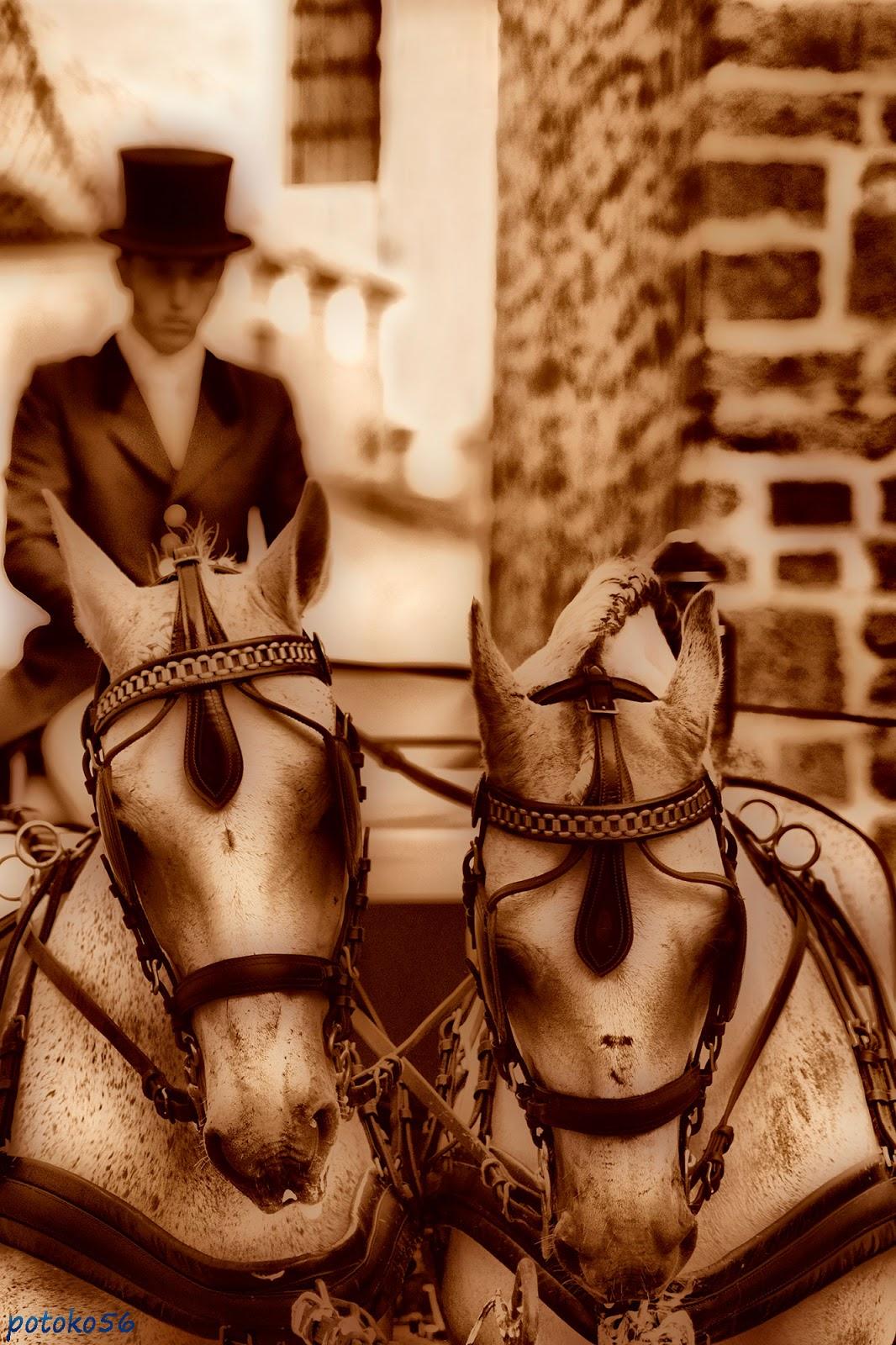 Coche de caballo en sepia esperando a los novios Rota
