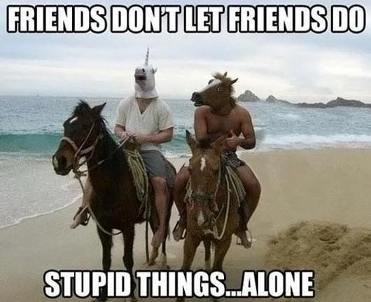 Friends Don't Let Friends Do...