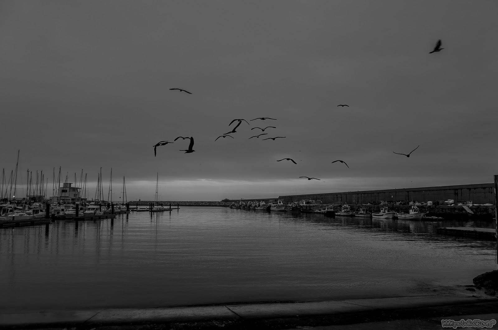 una mañana de invierno en el Muelle de Rota