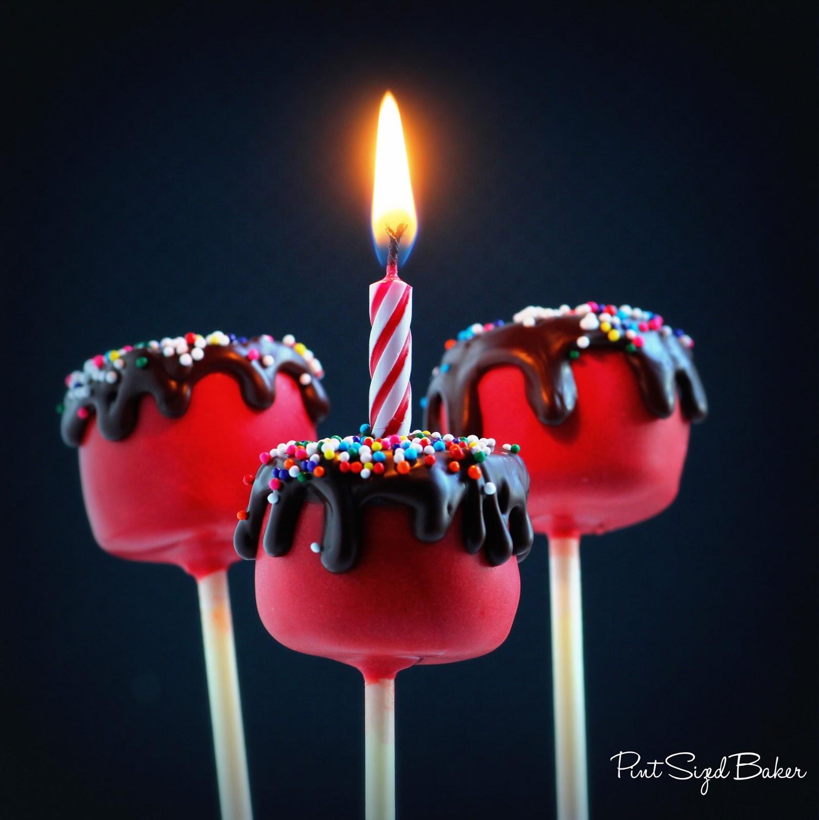 Images Cake Pops : Happy Birthday Cake Cake Pops - Pint Sized Baker