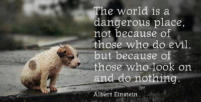 The world is a dangerous place, not because of those who do evil, but because of those who look on and do nothing.