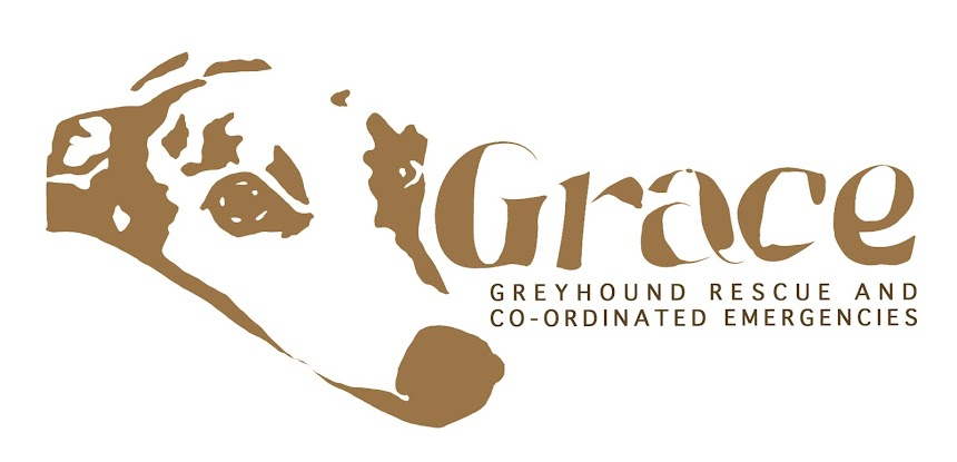 Greyhound Rescue and Co-ordinated Emergencies
