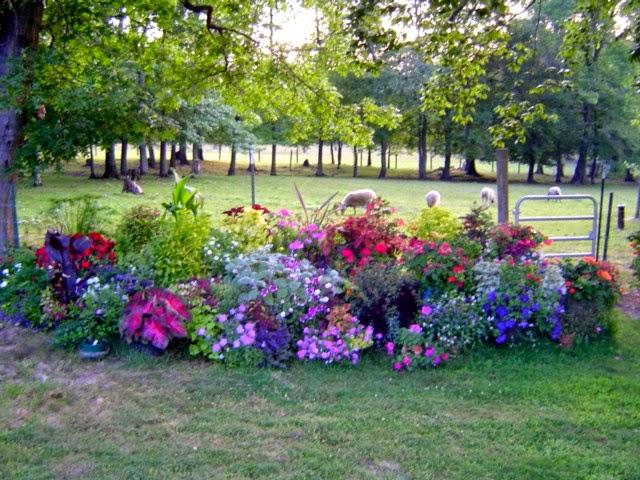 Backyard Flower Farmer : Flower garden bed, image via PINTEREST
