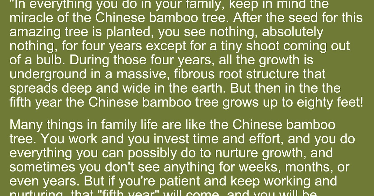 And spiritually speaking the parable of the chinese for What can you do with bamboo