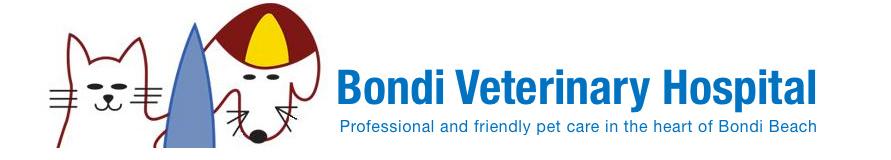 Bondi Vet Hospital