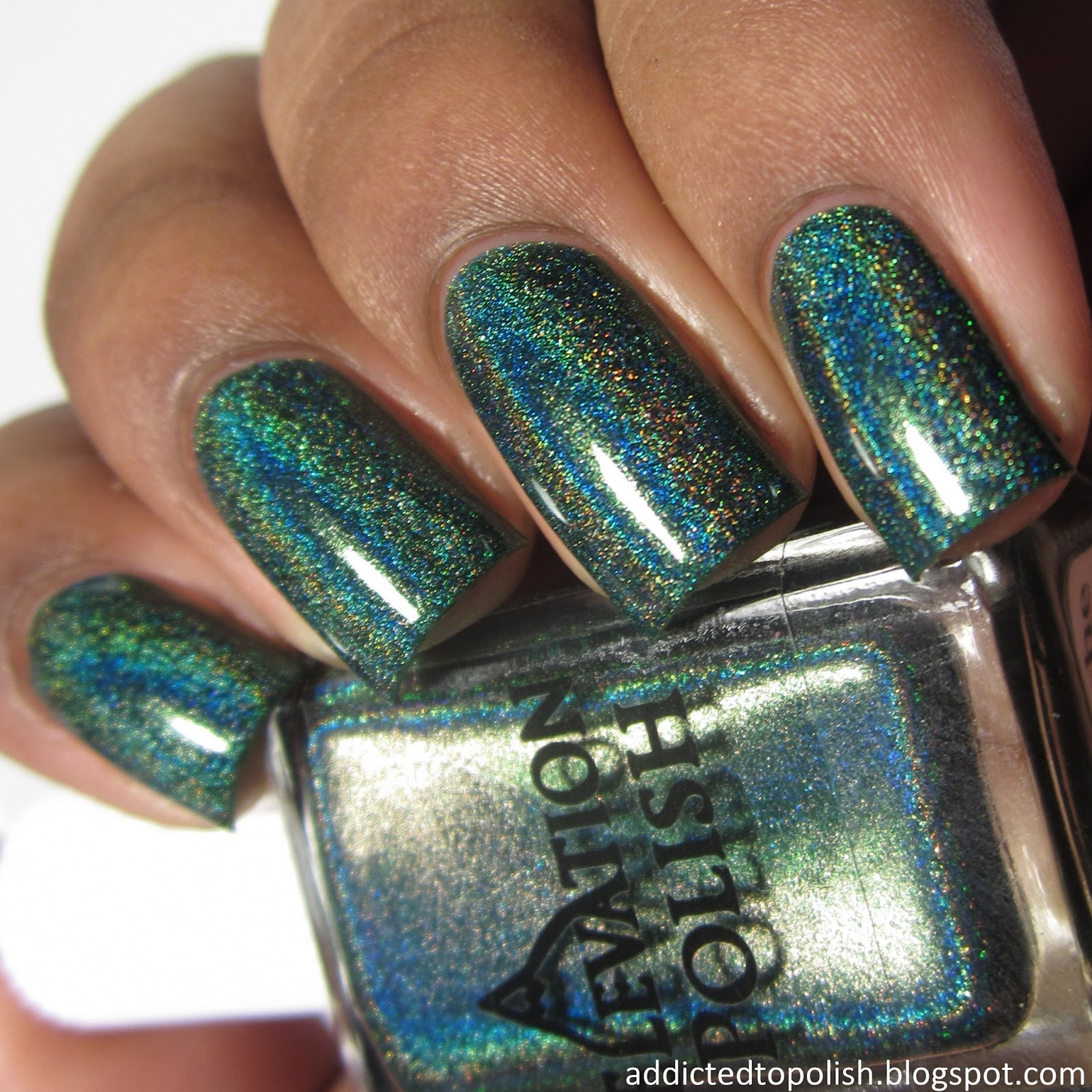 elevation polish lost in the darkness 2