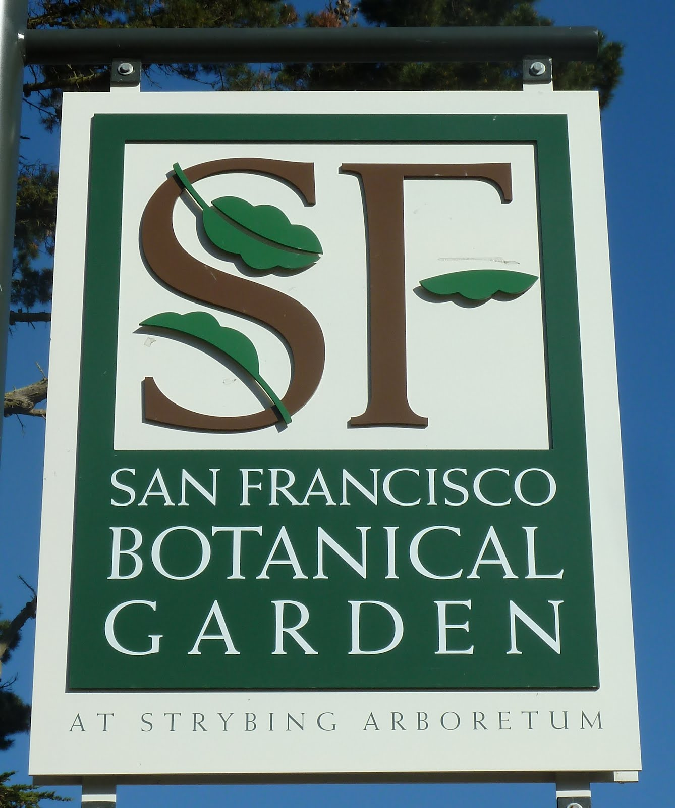 San Francisco Botanical Garden At Strybing Arboretum March 4 2012 Mani Verde Green Hands By
