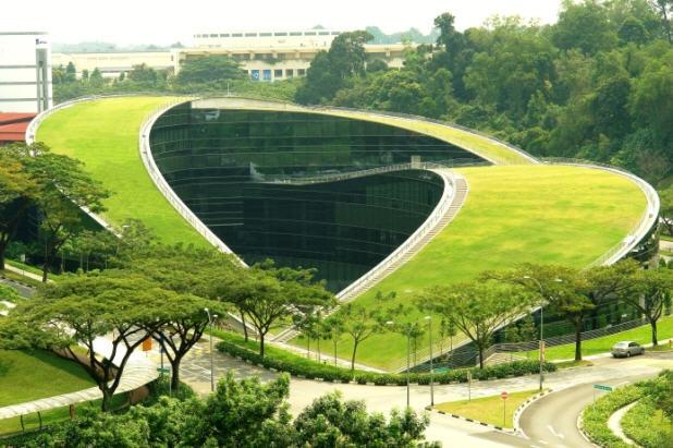 design Telhados Verdes